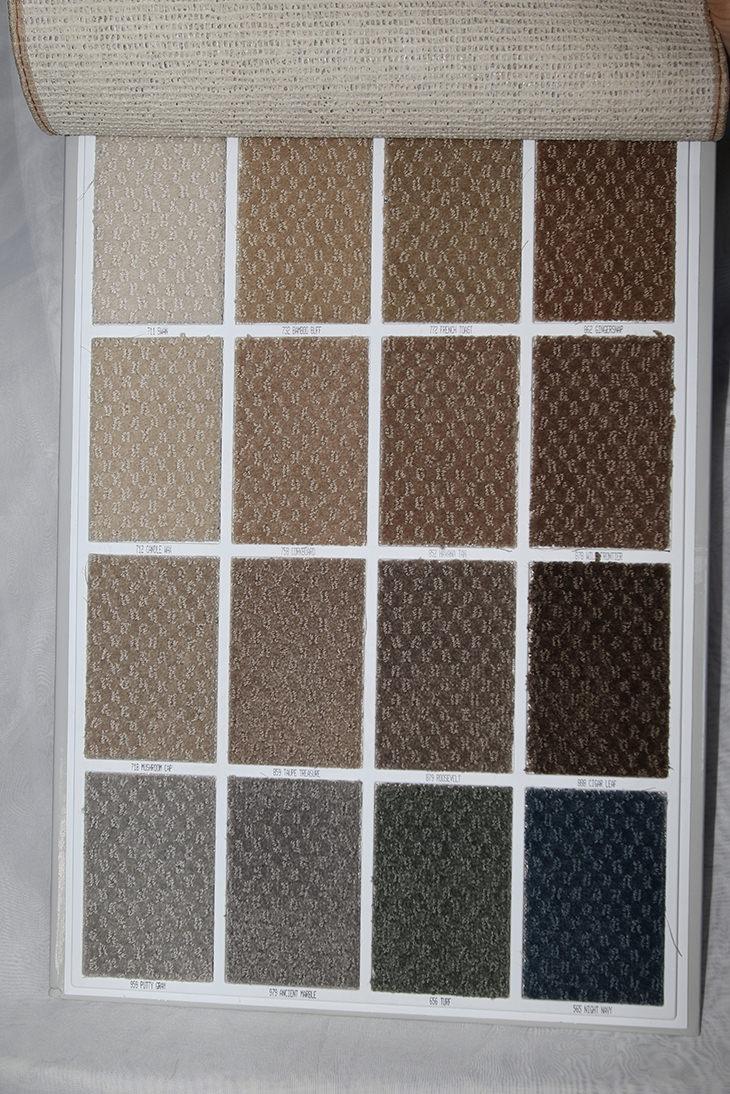Mohawk carpet pet sns carpet vidalondon for Pet resistant carpet